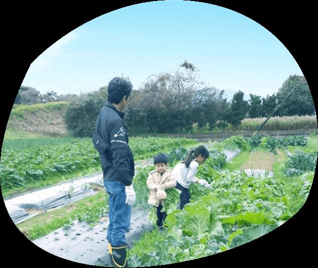 糸島ダーチャ農園 イメージ 1